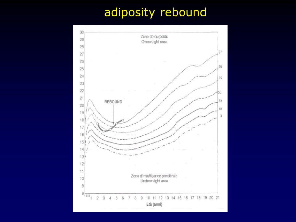 adiposity rebound