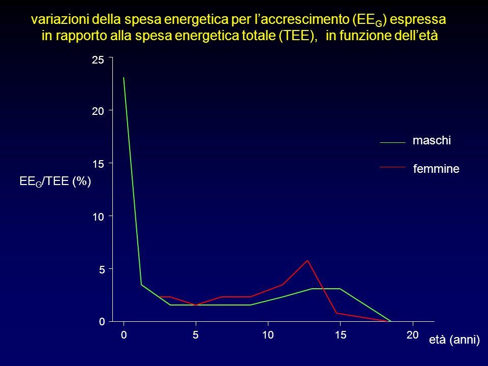 0 5 10 15 20 25 05101520 maschi femmine variazioni della spesa energetica per laccrescimento (EE G ) espressa in rapporto alla spesa energetica totale (TEE), in funzione delletà età (anni) EE G /TEE (%)
