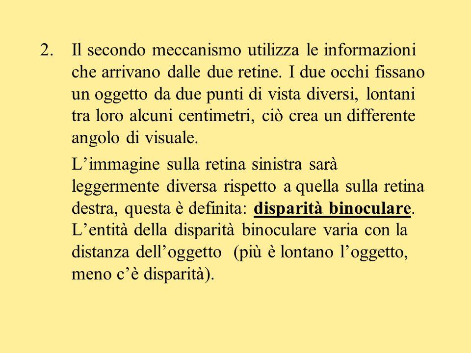 2.Il secondo meccanismo utilizza le informazioni che arrivano dalle due retine. I due occhi fissano un oggetto da due punti di vista diversi, lontani