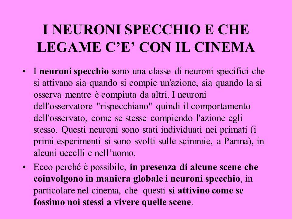 I NEURONI SPECCHIO E CHE LEGAME CE CON IL CINEMA I neuroni specchio sono una classe di neuroni specifici che si attivano sia quando si compie un'azion