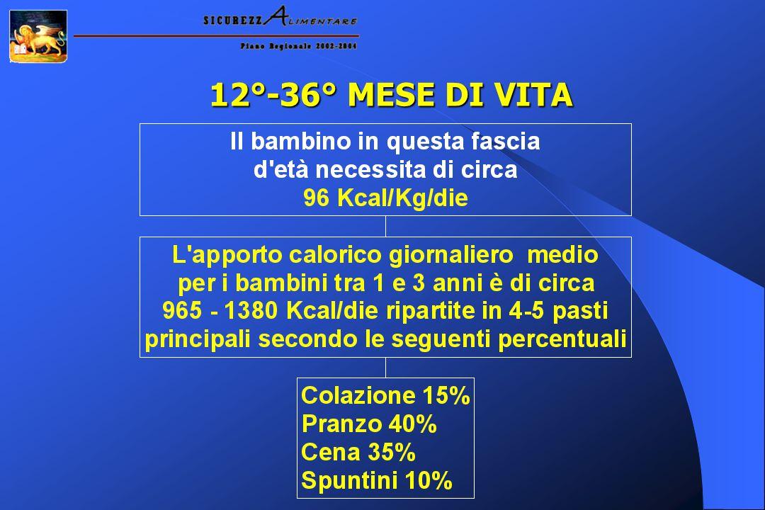 12°-36° MESE DI VITA