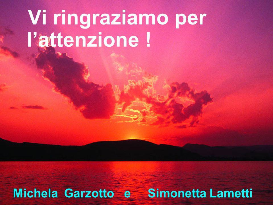 Vi ringraziamo per lattenzione ! Michela Garzotto e Simonetta Lametti