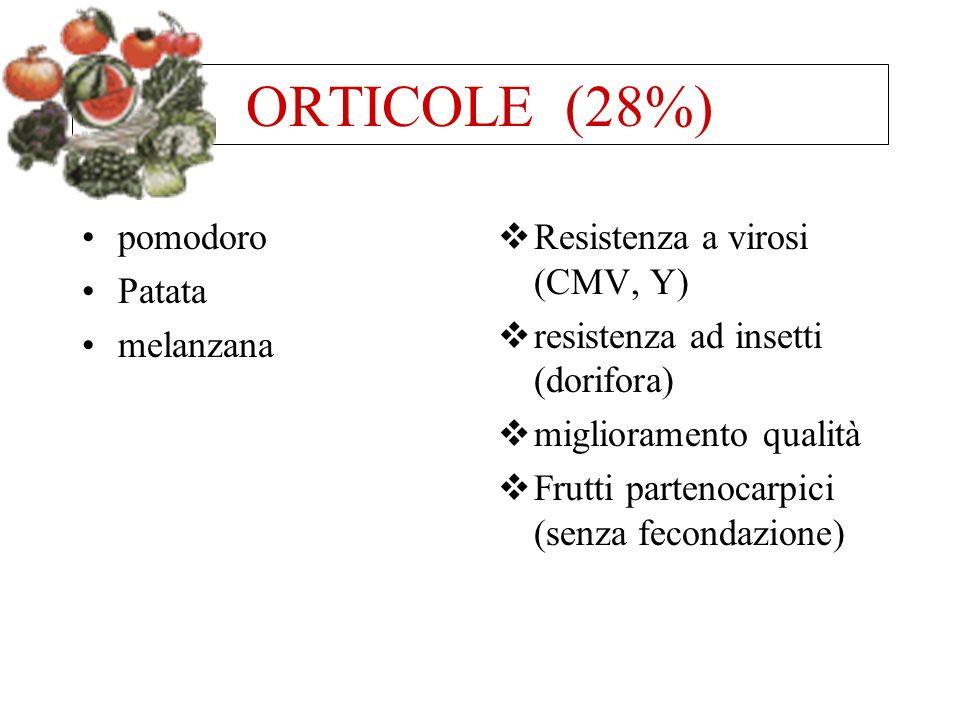 ORTICOLE (28%) pomodoro Patata melanzana Resistenza a virosi (CMV, Y) resistenza ad insetti (dorifora) miglioramento qualità Frutti partenocarpici (se
