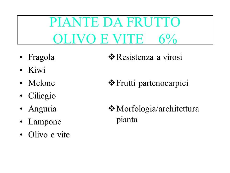 PIANTE DA FRUTTO OLIVO E VITE 6% Fragola Kiwi Melone Ciliegio Anguria Lampone Olivo e vite Resistenza a virosi Frutti partenocarpici Morfologia/archit
