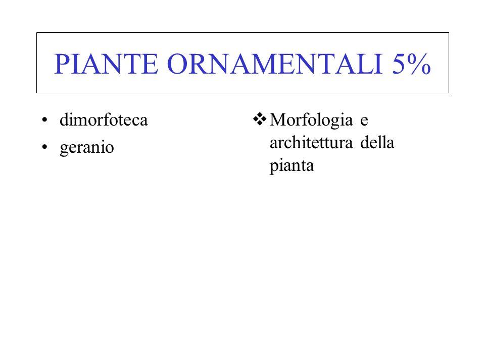 PIANTE ORNAMENTALI 5% dimorfoteca geranio Morfologia e architettura della pianta