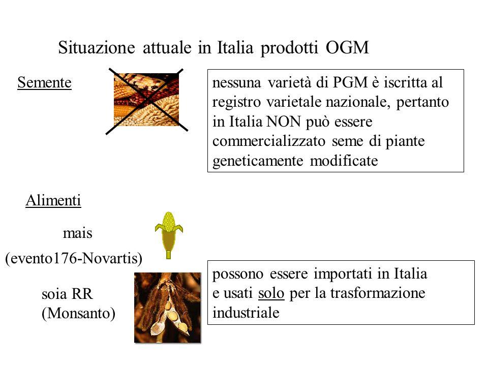 Situazione attuale in Italia prodotti OGM Semente Alimenti nessuna varietà di PGM è iscritta al registro varietale nazionale, pertanto in Italia NON p