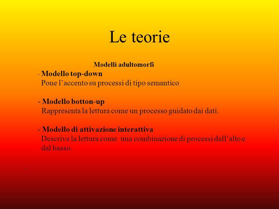 Le teorie Modelli adultomorfi - Modello top-down Pone laccento su processi di tipo semantico - Modello botton-up Rappresenta la lettura come un proces