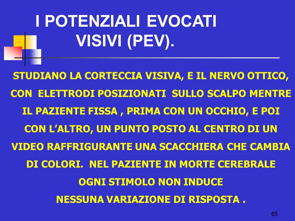 65 I POTENZIALI EVOCATI VISIVI (PEV).