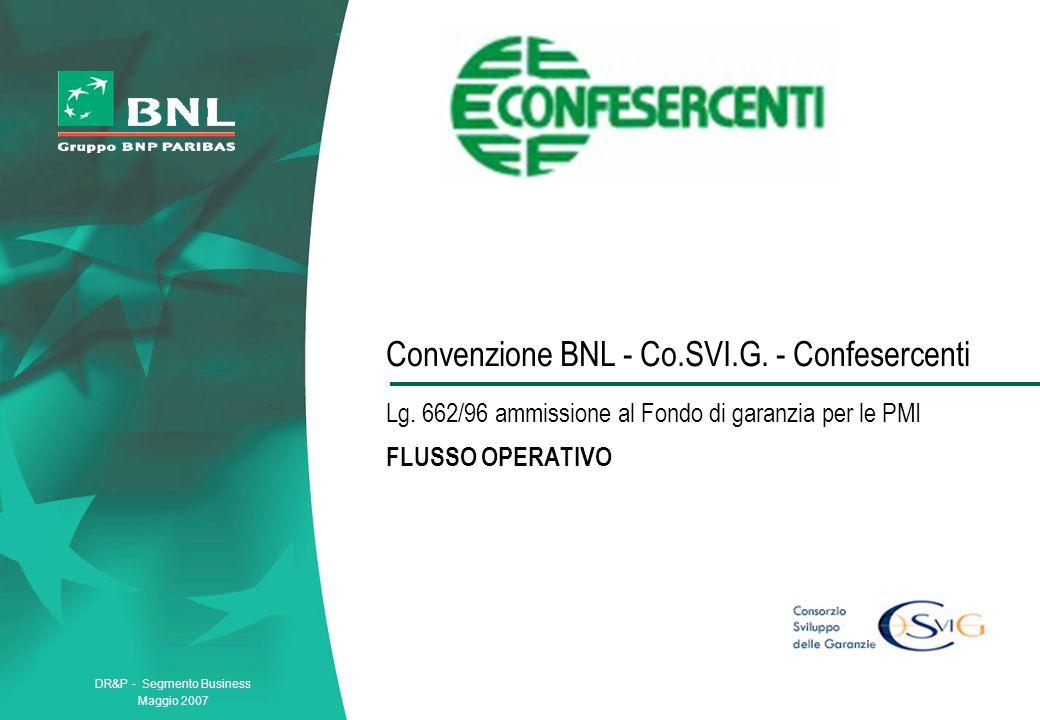 DR&P - Segmento Business Maggio 2007 Convenzione BNL - Co.SVI.G.