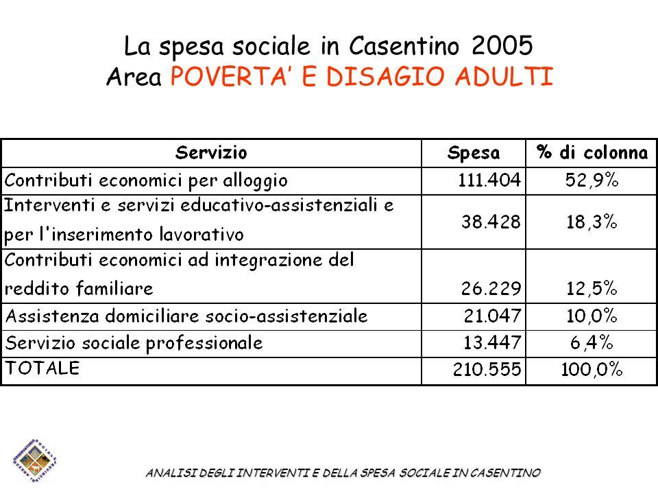 La spesa sociale in Casentino 2005 Area POVERTA E DISAGIO ADULTI ANALISI DEGLI INTERVENTI E DELLA SPESA SOCIALE IN CASENTINO