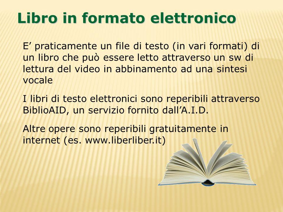 E praticamente un file di testo (in vari formati) di un libro che può essere letto attraverso un sw di lettura del video in abbinamento ad una sintesi