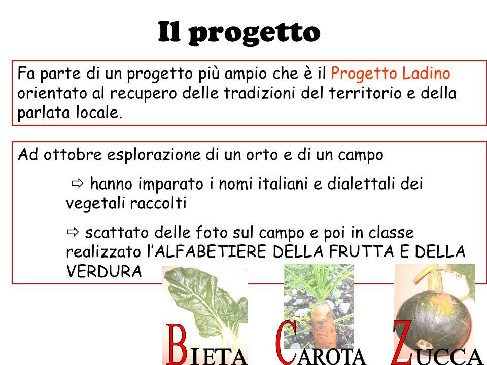 Il progetto Ad ottobre esplorazione di un orto e di un campo hanno imparato i nomi italiani e dialettali dei vegetali raccolti scattato delle foto sul