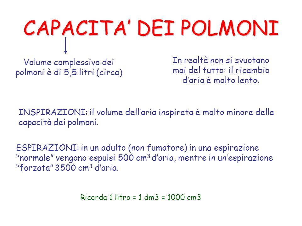 CAPACITA DEI POLMONI Volume complessivo dei polmoni è di 5,5 litri (circa) In realtà non si svuotano mai del tutto: il ricambio daria è molto lento.
