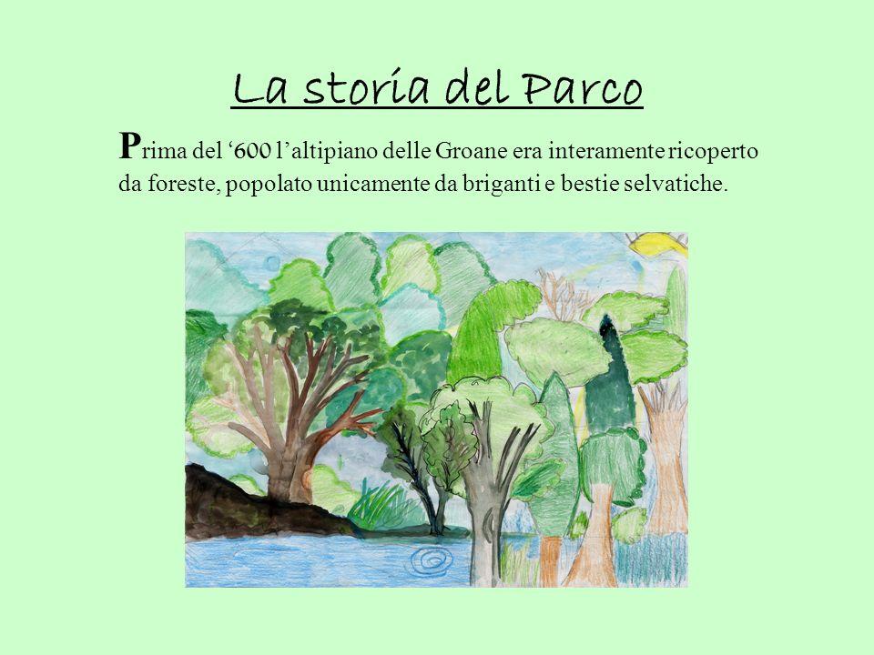 La storia del Parco P rima del 600 l altipiano delle Groane era interamente ricoperto da foreste, popolato unicamente da briganti e bestie selvatiche.