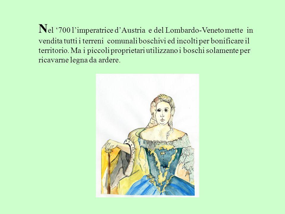 N el 700 limperatrice dAustria e del Lombardo-Veneto mette in vendita tutti i terreni comunali boschivi ed incolti per bonificare il territorio. Ma i