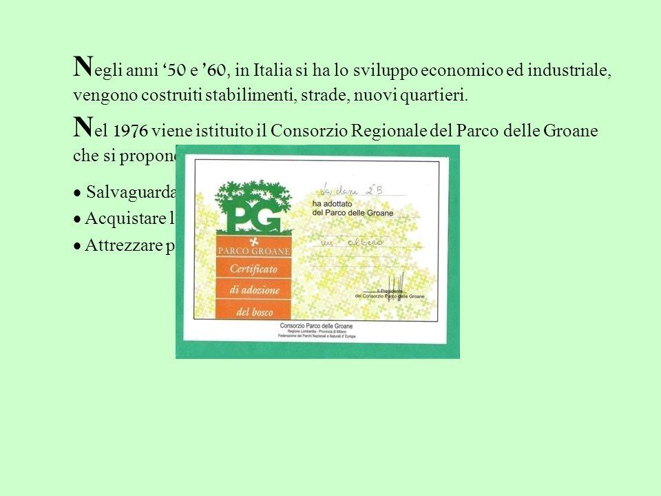 N egli anni 50 e 60, in Italia si ha lo sviluppo economico ed industriale, vengono costruiti stabilimenti, strade, nuovi quartieri. N el 1976 viene is