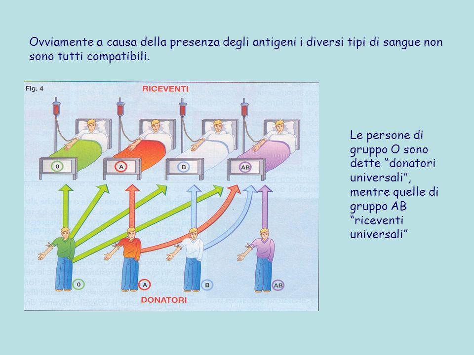Ovviamente a causa della presenza degli antigeni i diversi tipi di sangue non sono tutti compatibili.