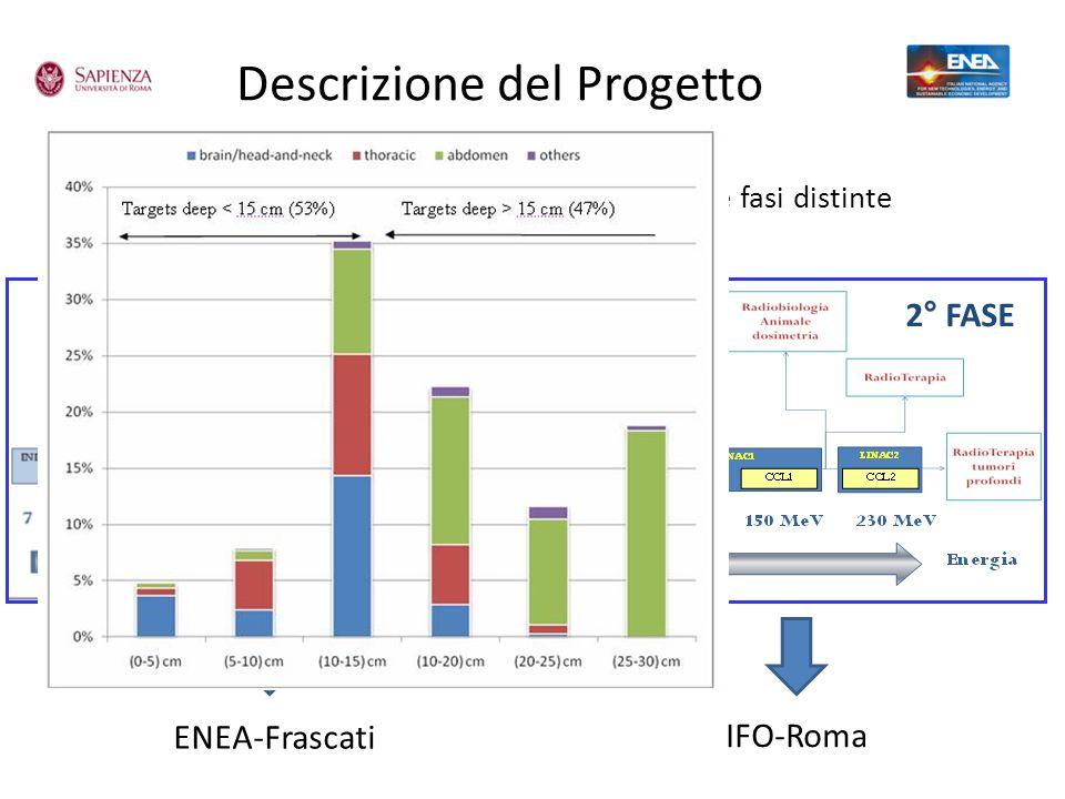 Descrizione del Progetto 1° FASE 2° FASE ENEA-Frascati IFO-Roma Il LINAC da 230 MeV verrà realizzato in due fasi distinte
