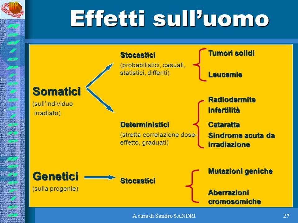 A cura di Sandro SANDRI27 Effetti sulluomo Stocastici (probabilistici, casuali, statistici, differiti) Tumori solidi Leucemie Somatici (sullindividuo