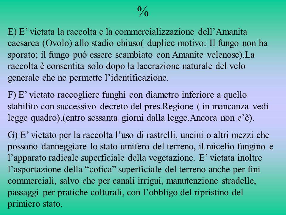 % E) E vietata la raccolta e la commercializzazione dellAmanita caesarea (Ovolo) allo stadio chiuso( duplice motivo: Il fungo non ha sporato; il fungo