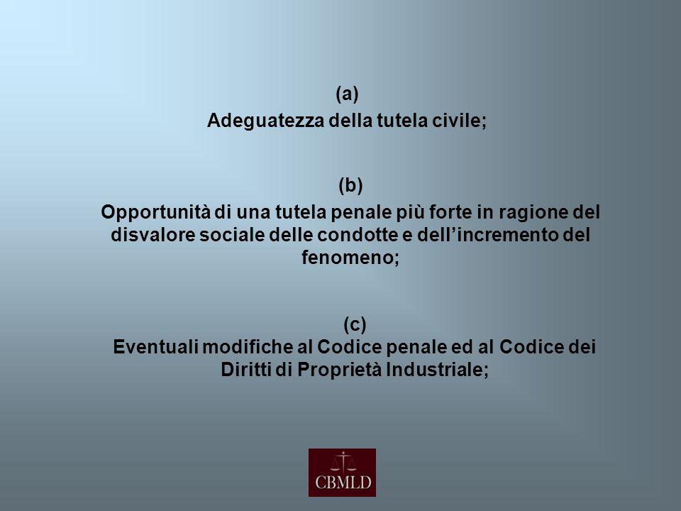 (a) Adeguatezza della tutela civile; (b) Opportunità di una tutela penale più forte in ragione del disvalore sociale delle condotte e dellincremento d