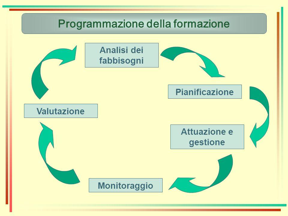 Programmazione della formazione Analisi dei fabbisogni Pianificazione Attuazione e gestione Monitoraggio Valutazione