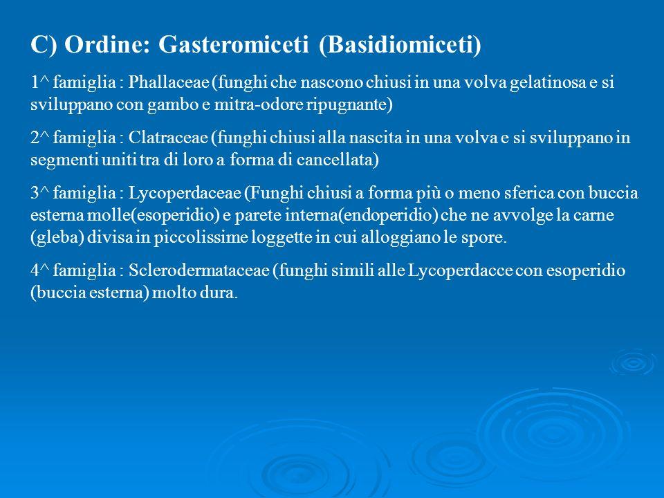 C) Ordine: Gasteromiceti (Basidiomiceti) 1^ famiglia : Phallaceae (funghi che nascono chiusi in una volva gelatinosa e si sviluppano con gambo e mitra