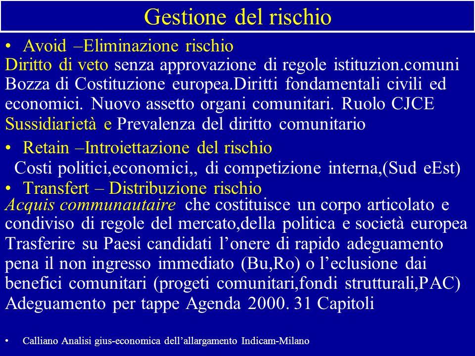Gestione del rischio Avoid –Eliminazione rischio Diritto di veto senza approvazione di regole istituzion.comuni Bozza di Costituzione europea.Diritti fondamentali civili ed economici.