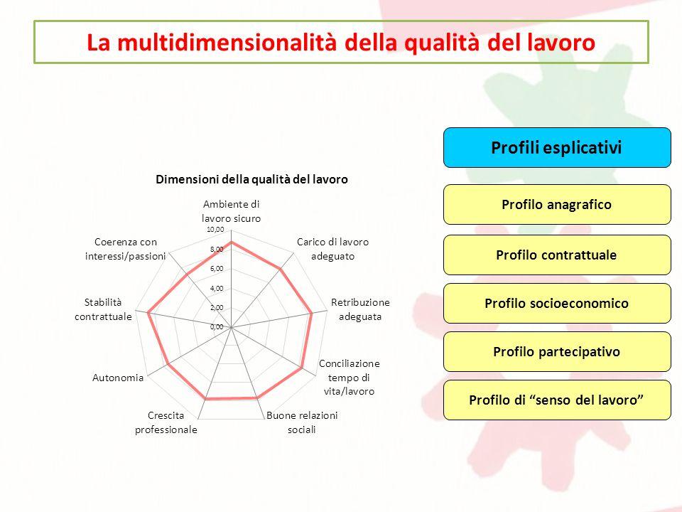 La multidimensionalità della qualità del lavoro Profili esplicativi Profilo di senso del lavoro Profilo contrattuale Profilo anagrafico Profilo partec