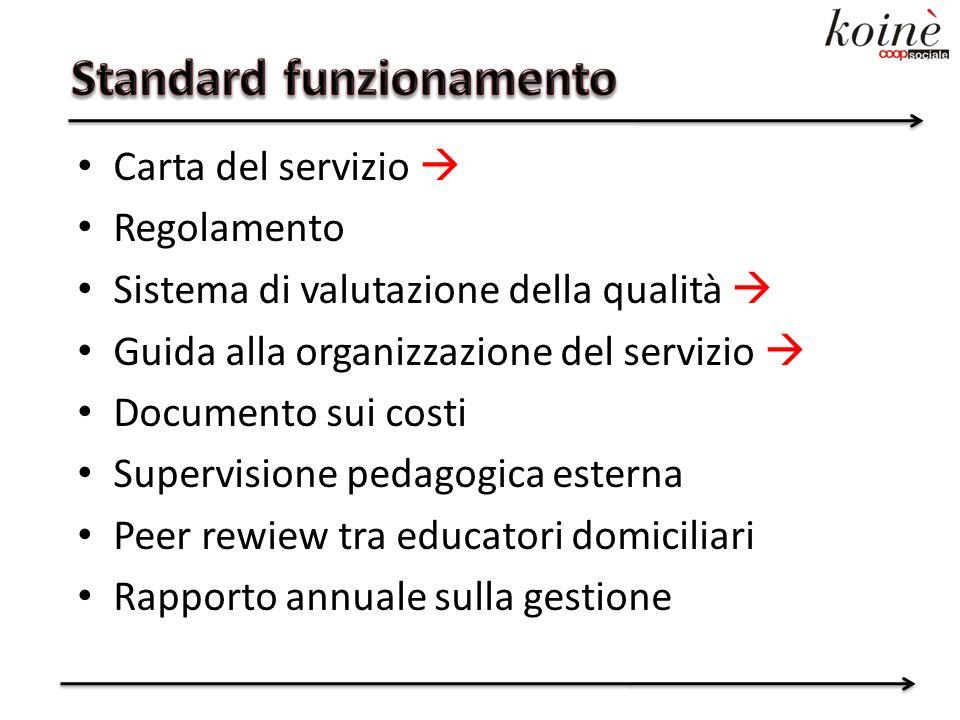 Carta del servizio Regolamento Sistema di valutazione della qualità Guida alla organizzazione del servizio Documento sui costi Supervisione pedagogica esterna Peer rewiew tra educatori domiciliari Rapporto annuale sulla gestione