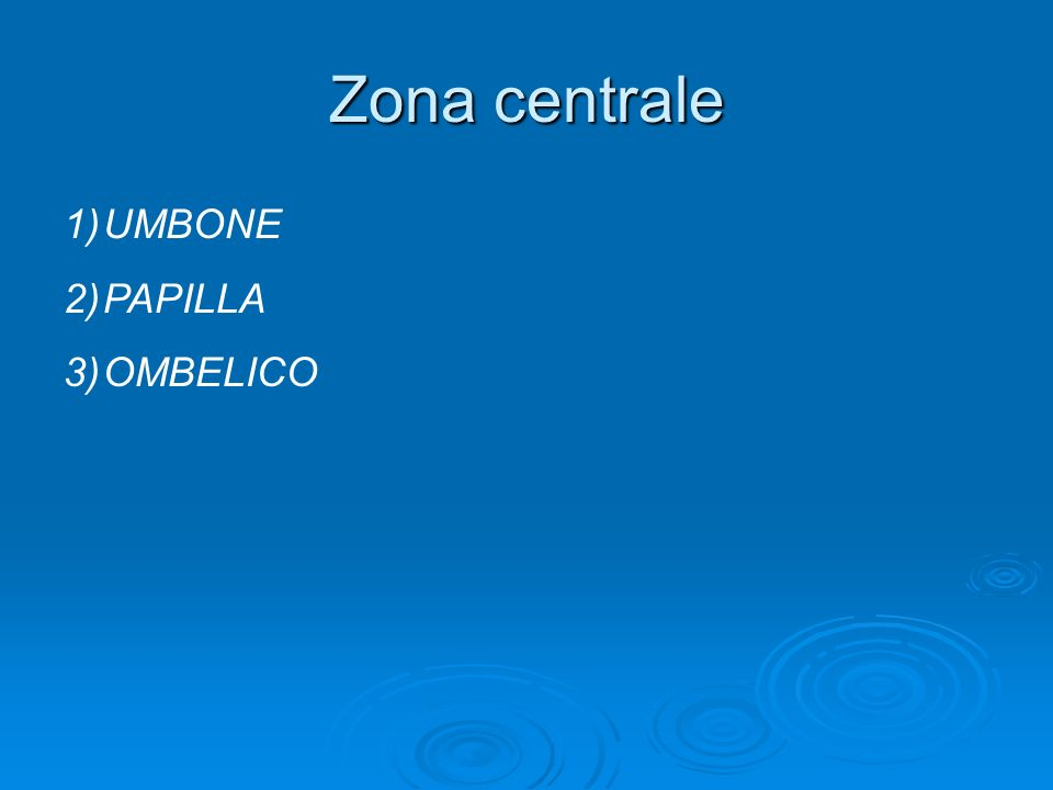 Zona centrale 1)UMBONE 2)PAPILLA 3)OMBELICO