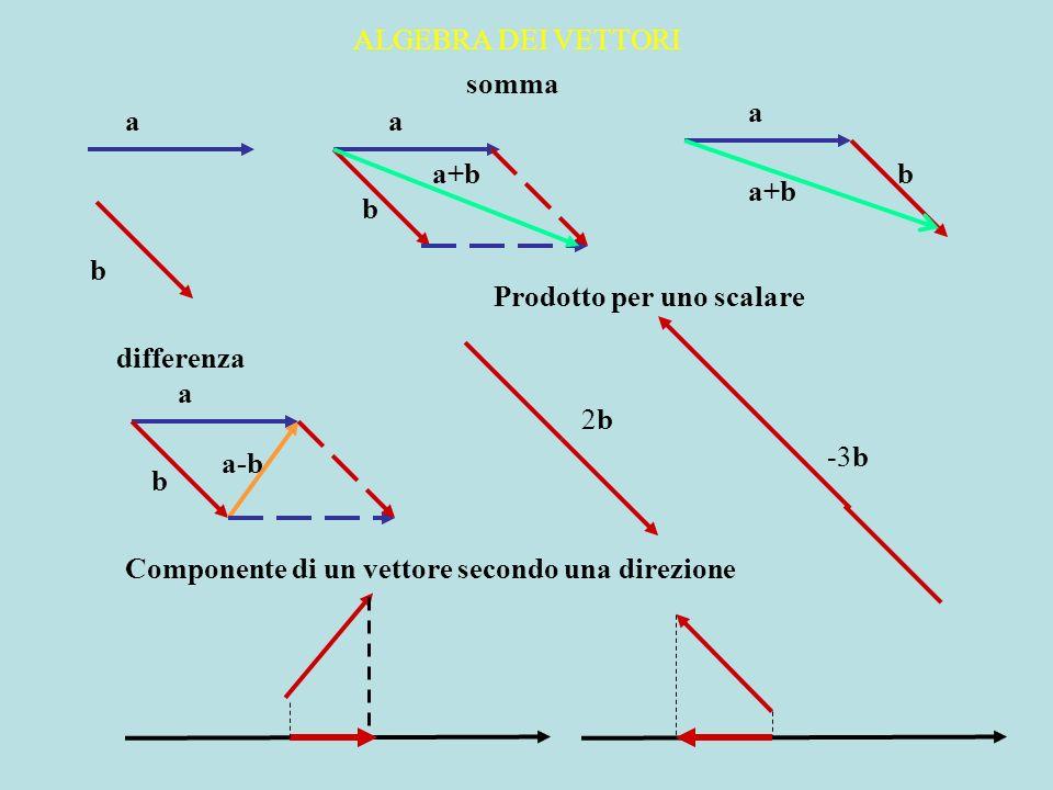 ALGEBRA DEI VETTORI somma differenza Prodotto per uno scalare Componente di un vettore secondo una direzione a b a+b a-b 2b2b -3b a a b b b a