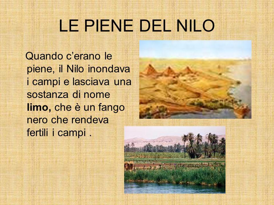 LE PIENE DEL NILO Quando cerano le piene, il Nilo inondava i campi e lasciava una sostanza di nome limo, che è un fango nero che rendeva fertili i campi.