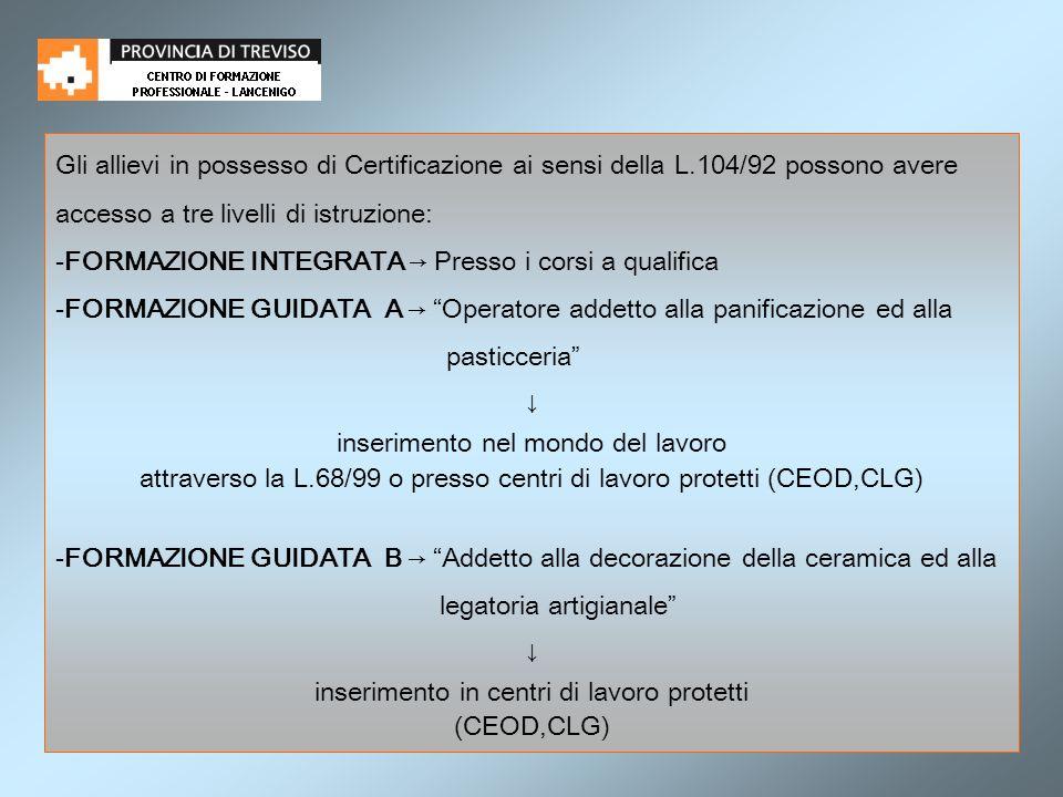Gli allievi in possesso di Certificazione ai sensi della L.104/92 possono avere accesso a tre livelli di istruzione: -FORMAZIONE INTEGRATA Presso i co