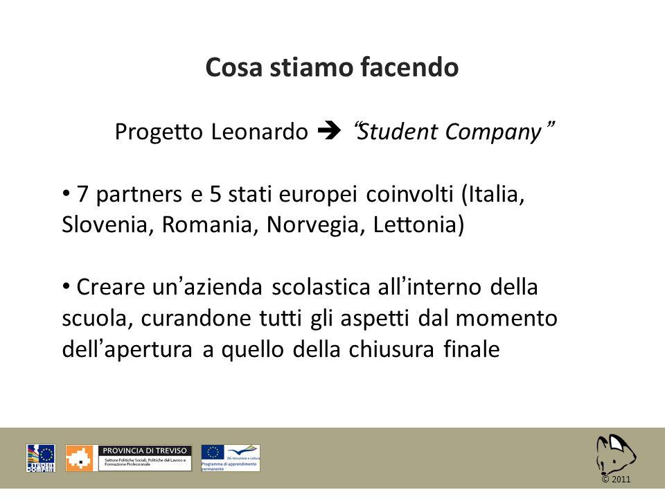 Cosa stiamo facendo Progetto Leonardo Student Company 7 partners e 5 stati europei coinvolti (Italia, Slovenia, Romania, Norvegia, Lettonia) Creare un