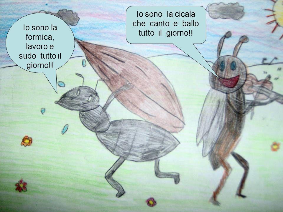Io sono la cicala che canto e ballo tutto il giorno!! Io sono la formica, lavoro e sudo tutto il giorno!!