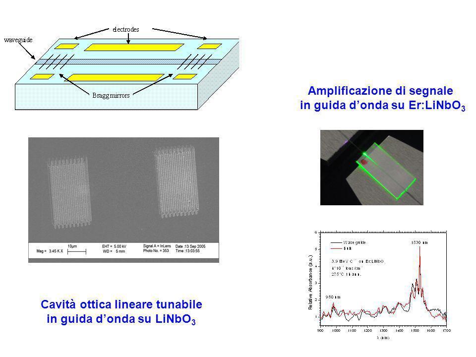 Cavità ottica lineare tunabile in guida donda su LiNbO 3 Amplificazione di segnale in guida donda su Er:LiNbO 3