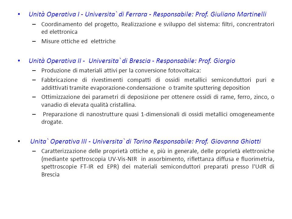 Unità Operativa I - Universita` di Ferrara - Responsabile: Prof.