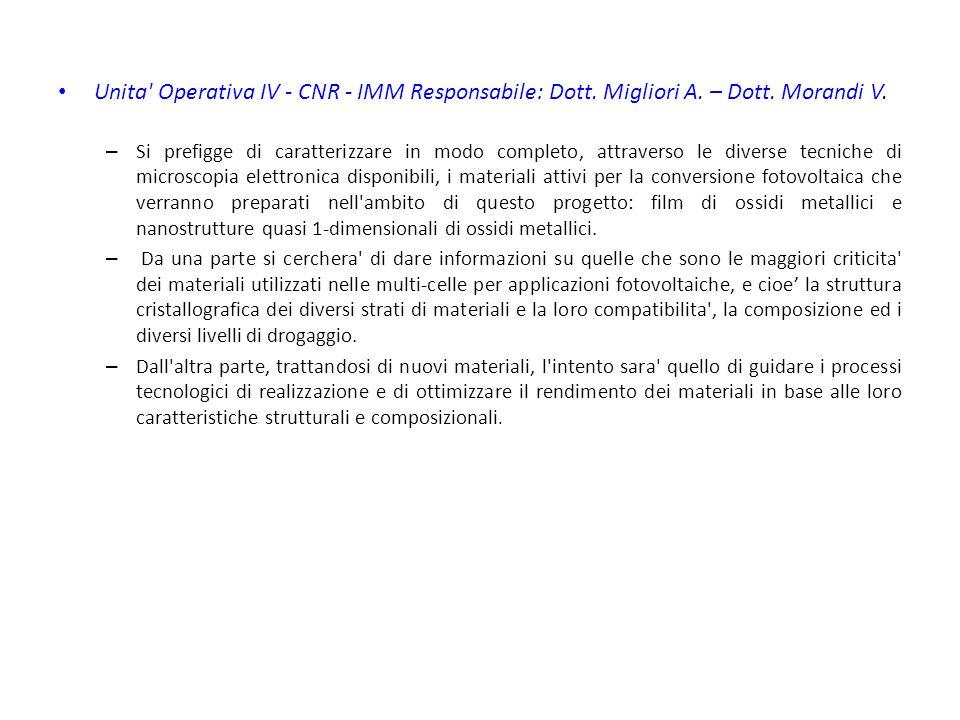 Unita Operativa IV - CNR - IMM Responsabile: Dott.