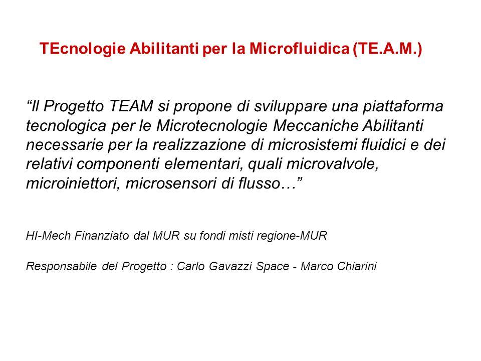 TEcnologie Abilitanti per la Microfluidica (TE.A.M.) Il Progetto TEAM si propone di sviluppare una piattaforma tecnologica per le Microtecnologie Mecc