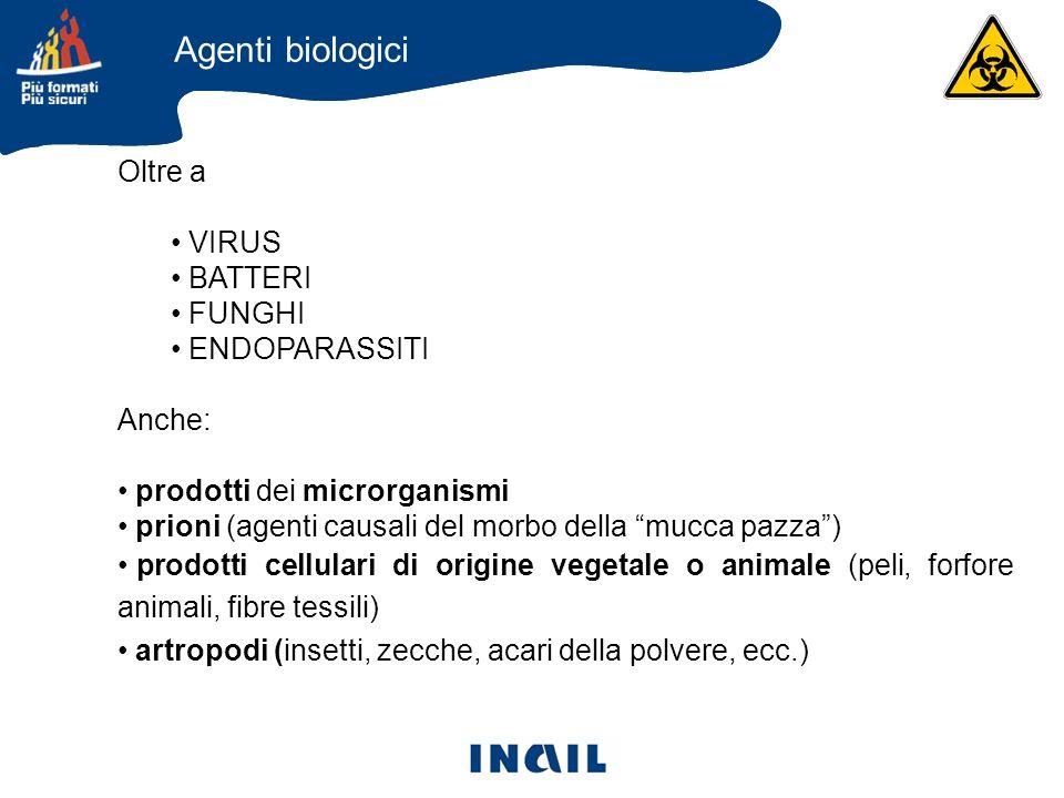 Oltre a VIRUS BATTERI FUNGHI ENDOPARASSITI Anche: prodotti dei microrganismi prioni (agenti causali del morbo della mucca pazza) prodotti cellulari di