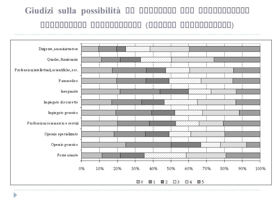 Giudizi sulla possibilità di carriera per professione Lavoratori subordinati ( valori percentuali )