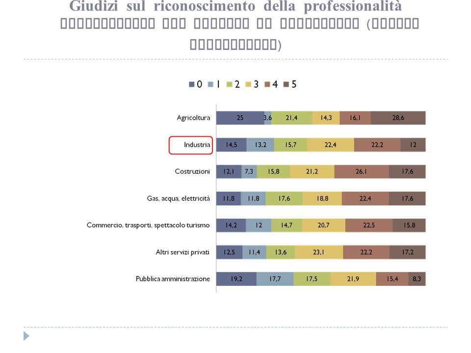 Giudizi sul riconoscimento della professionalità Ripartizione per settore di produzione ( valori percentuali )