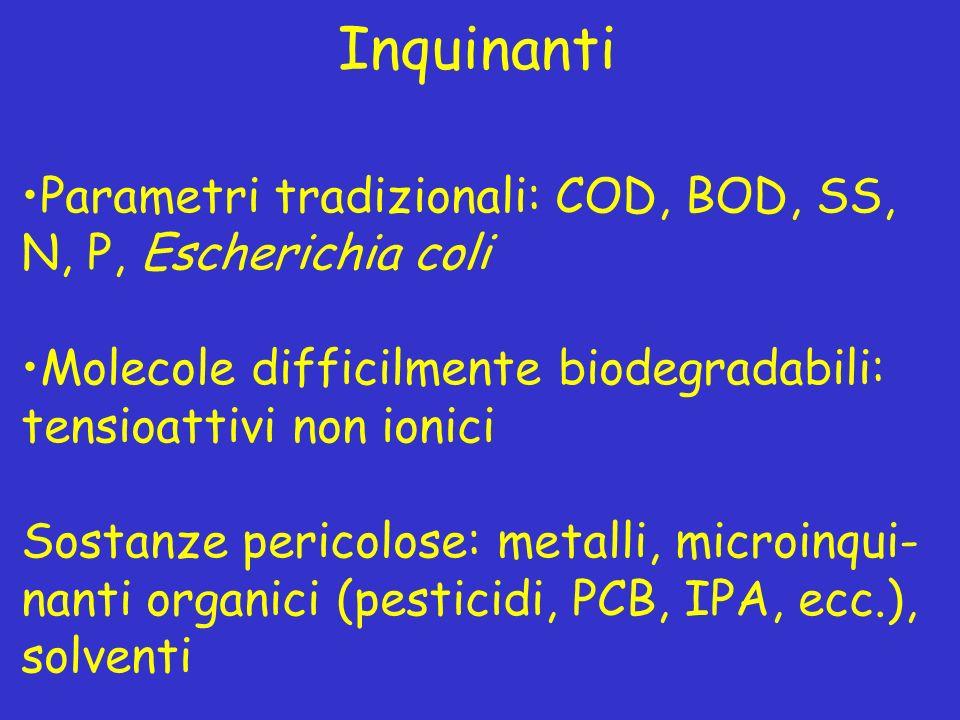 Inquinanti Parametri tradizionali: COD, BOD, SS, N, P, Escherichia coli Molecole difficilmente biodegradabili: tensioattivi non ionici Sostanze perico