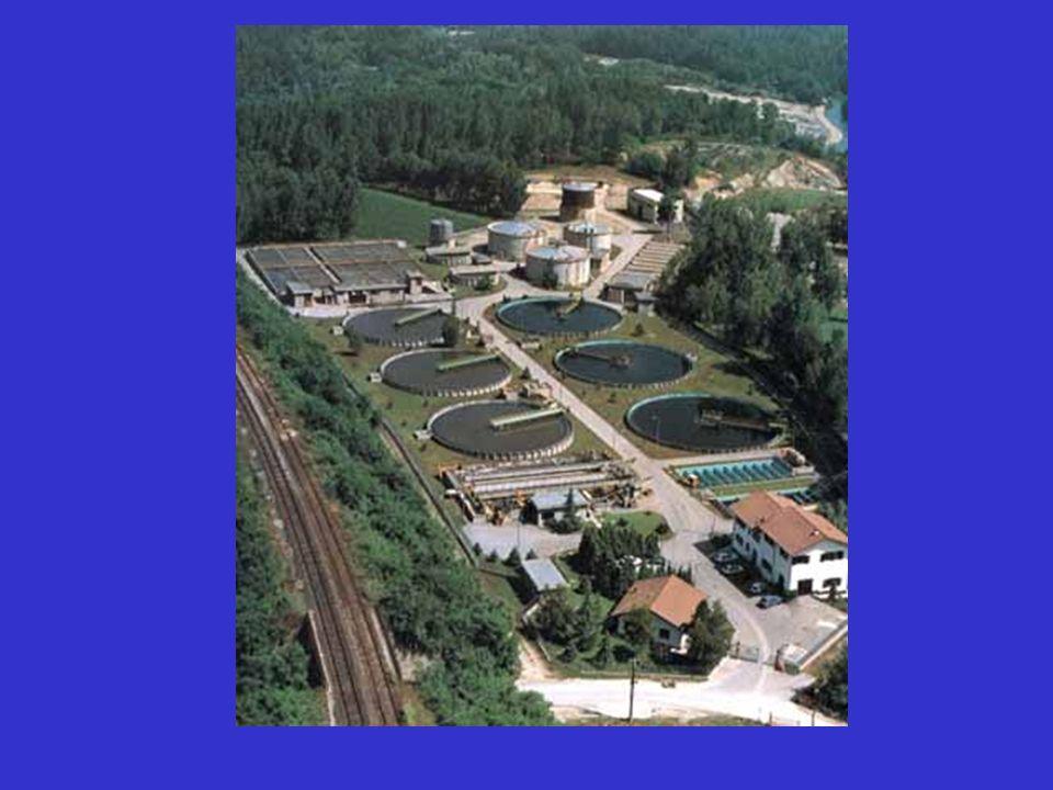 PROCESSO A FANGHI ATTIVI (biomassa sospesa) Sviluppo di biomassa saprofita a spese delle varie componenti del liquame Bioflocculazione Degradazione biologica di composti organici Adsorbimento di molecole recalcitranti e di inquinanti inorganici (metalli)