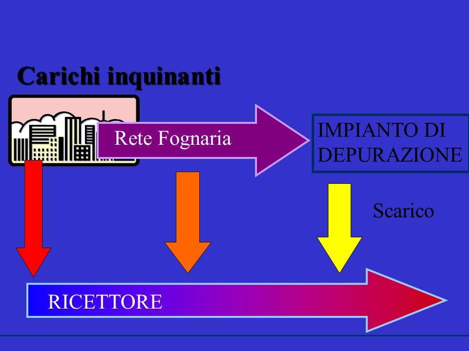 Carichi inquinanti IMPIANTO DI DEPURAZIONE Rete Fognaria RICETTORE Scarico