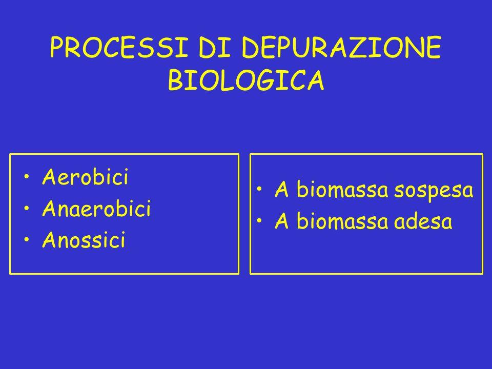 PROCESSI DI DEPURAZIONE BIOLOGICA Aerobici Anaerobici Anossici A biomassa sospesa A biomassa adesa