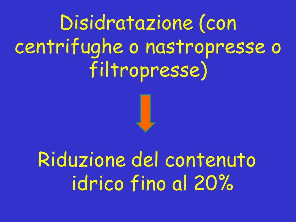Disidratazione (con centrifughe o nastropresse o filtropresse) Riduzione del contenuto idrico fino al 20%