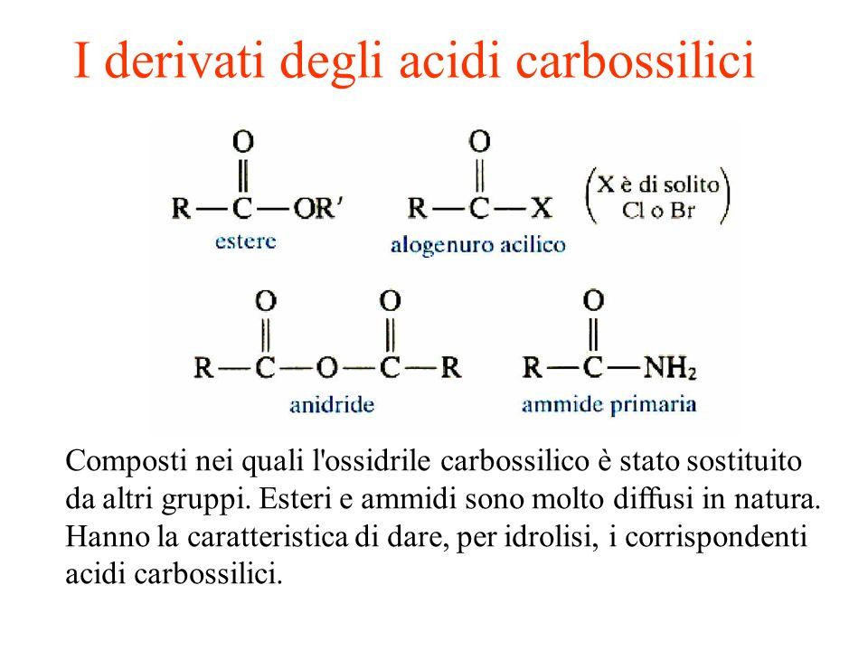 Esteri Derivano dagli acidi per sostituzione del gruppo OH con un gruppo OR e danno origine al profumo di molti frutti e fiori.