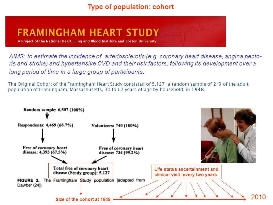 The Original Cohort of the Framingham Heart Study consisted of 5,127 a random sample of 2/3 of the adult population of Framingham, Massachusetts, 30 t